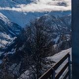 Premium Double Room - Terrace/Patio