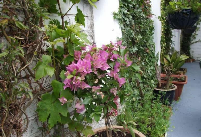 The Braedene Lodge Bed and Breakfast , Paignton, Garden