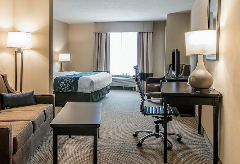 Comfort Suites University Area - South, South Bend, Suite, 1 cama de matrimonio grande con sofá cama, no fumadores, Habitación