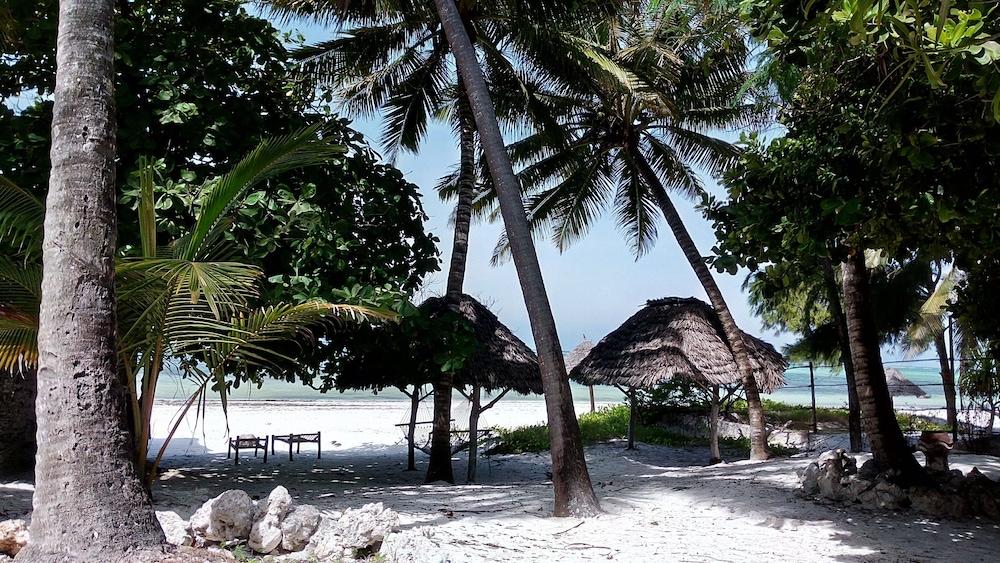 Twisted Palms Lodge & Restaurant, Bwejuu