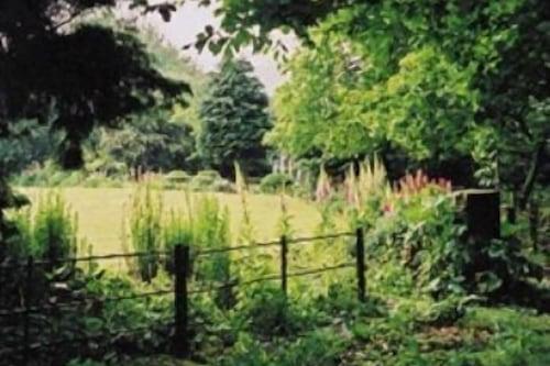 Pinchinthorpe