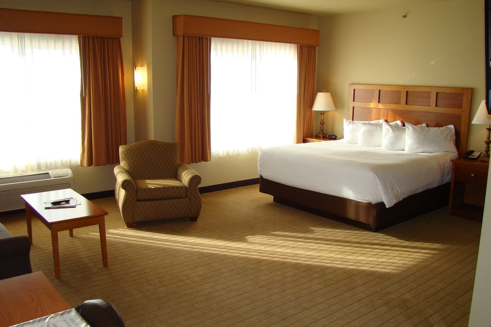 Deluxe Room, 1 King Bed, Kitchen (Large King Studio Half Kitchen) - Guest Room