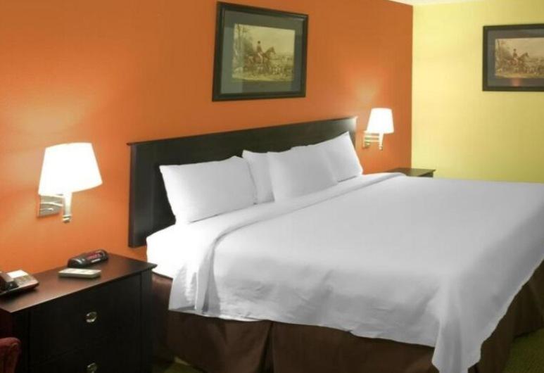 Americas Best Value Inn Waco, Waco, Kamer, 2 queensize bedden, niet-roken, Kamer