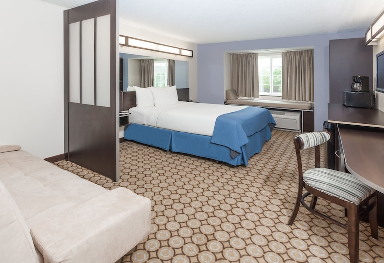 Microtel Inn & Suites by Wyndham Elkhart, Elkhart, Studio Suite, 1 Queen Bed, Non Smoking, Guest Room