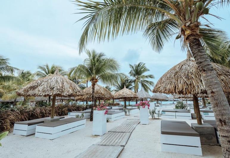 Kontiki Beach Resort Curaçao, Vilemstadas, Paplūdimys