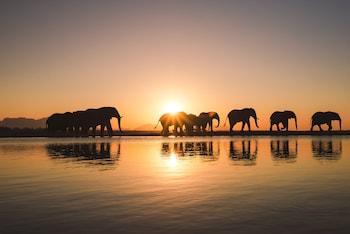 Bild vom Jabulani Safari in Hoedspruit