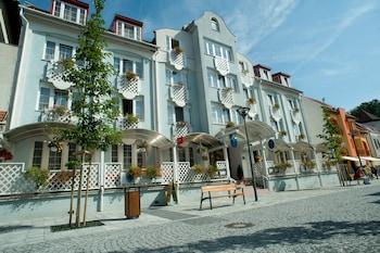 黑費茲赫維茲艾瑟貝特飯店的相片