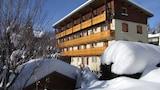 Villard-de-Lans hotels,Villard-de-Lans accommodatie, online Villard-de-Lans hotel-reserveringen