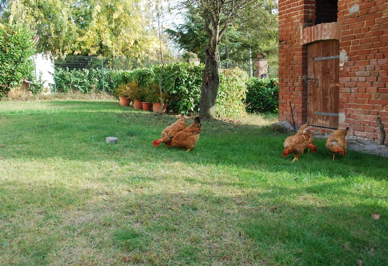 Cascina Bricchetto, Asti, Property Grounds