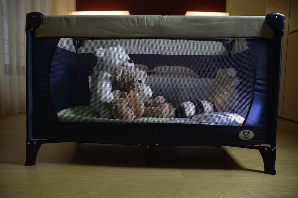 Triple Room - Children's Theme Room