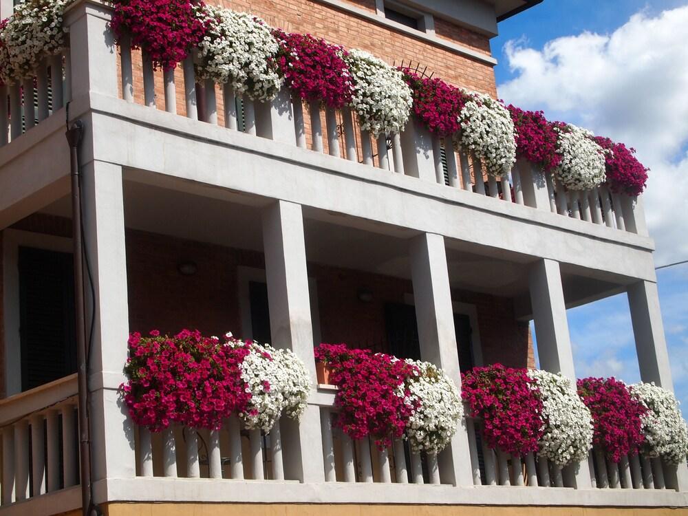 Book Soggiorno Lo Stellino in Siena | Hotels.com