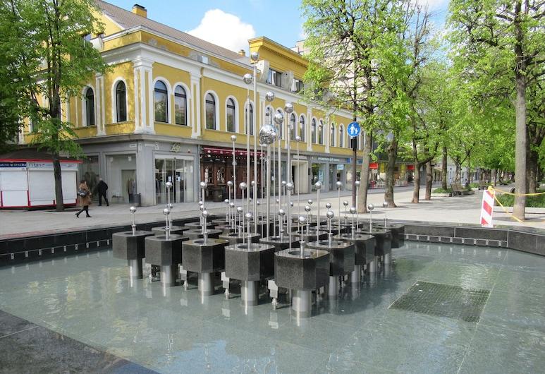 Hotel Metropolis, Kaunas, Hotel Front