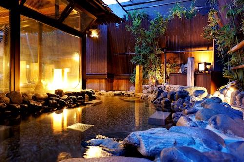 秋葉原溫泉多米旅館/