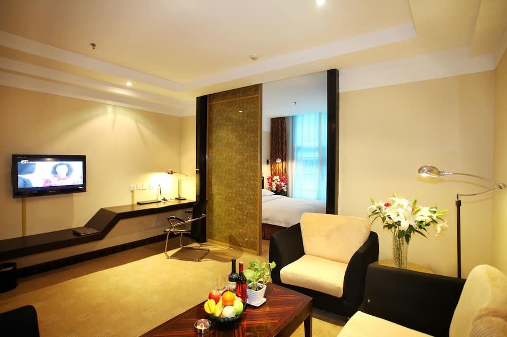 Darījumklases luksusa numurs - Dzīvojamā zona