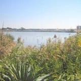 Z widokiem na jezioro