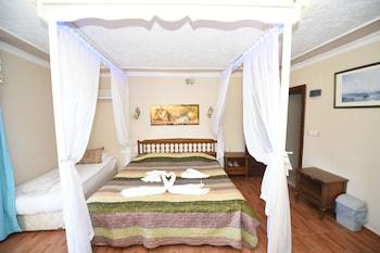 Selçuk bölgesindeki Rebetika Hotel resmi