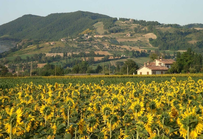 Fontecese Bed and Breakfast, Gubbio, Property Grounds
