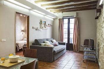 Imagen de AinB Las Ramblas-Guardia Apartments en Barcelona