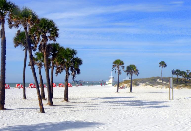 Pelican Pointe Hotel by Sunsational Beach Rentals LLC, Clearwater Beach, Praia