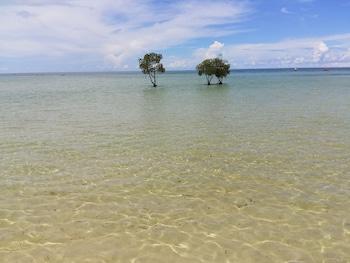 Sista minuten-erbjudanden på hotell i Puerto Princesa