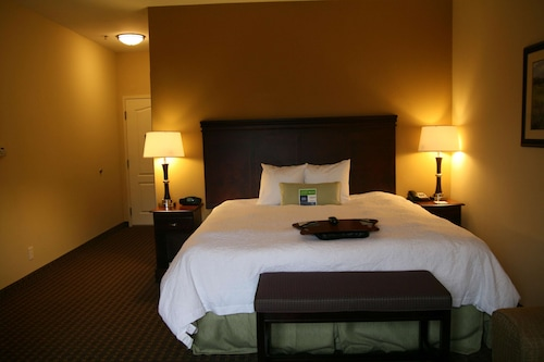 基戈爾希爾頓歡朋酒店/