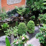 Vista para o jardim