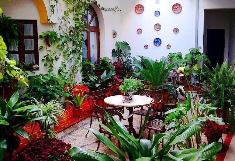 Hotel San Miguel, Córdoba, Terrass