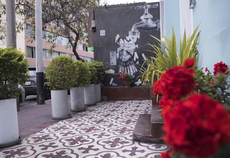 Red Llama Eco-Hostel , Ліма, Тераса/внутрішній дворик