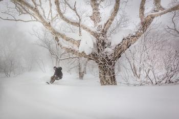 Bild vom Country Resort Niseko in Kutchan
