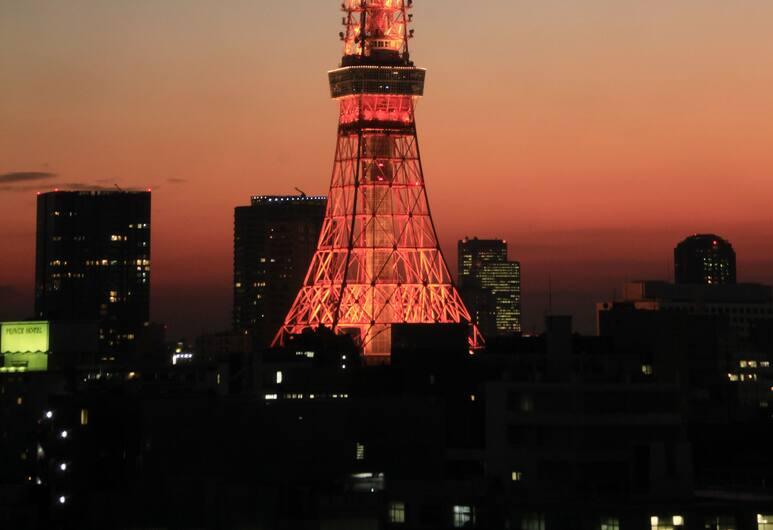 Sotetsu Fresa Inn Shinbashi-Karasumoriguchi, Tokyo, View from Hotel