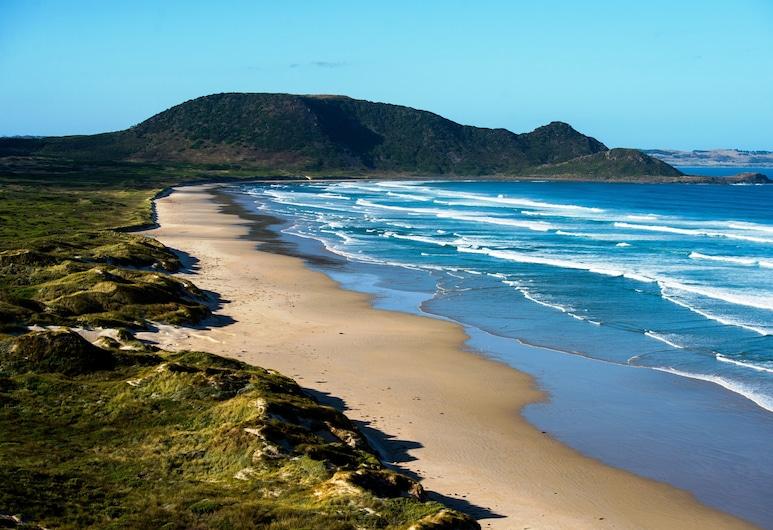Tall Timbers Tasmania, Smithton, Pláž