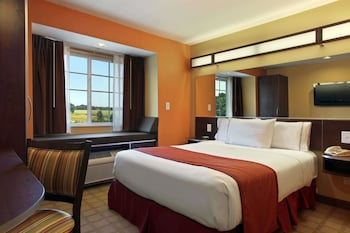 Picture of Microtel Inn & Suites by Wyndham Anderson/Clemson in Anderson