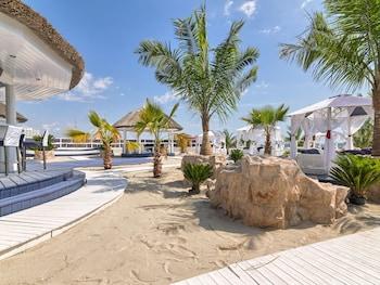 Picture of Vega Hotel in Constanta