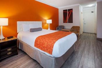 Introduce sus fechas y vea precios de hoteles última hora en Windsor