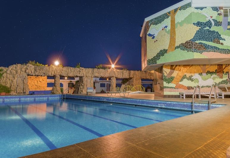 Hotel Annamalai International, Pondicherry, Pool
