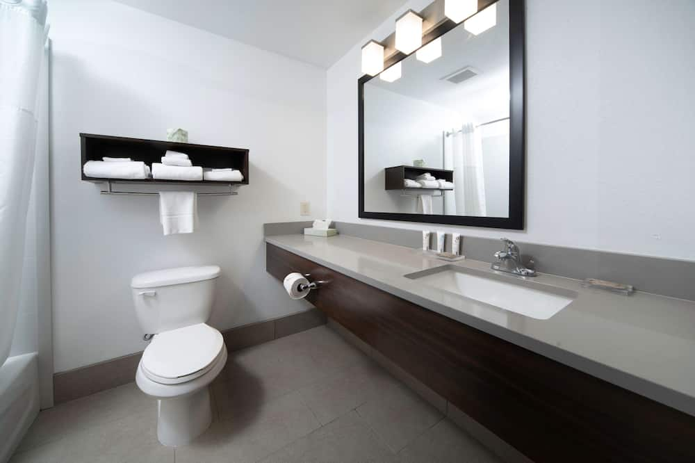 Suite, 1 Katil Raja (King), Non Smoking (Pet Friendly, 1 Bedroom) - Bilik mandi