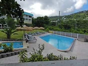 Obrázek hotelu Flamboyan On The Bay ve městě St. Thomas