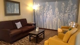 Choose This Pet Friendly Hotel in Rapid City