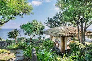 Nuotrauka: Seaes Hotel & Resort, Seogwipo