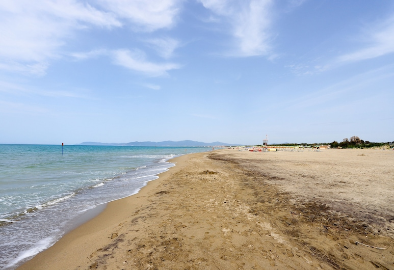 Grifone, Grosseto, Beach