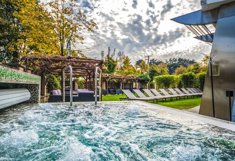 巴拉頓會議養生飯店, 秀佛克, 室外游泳池