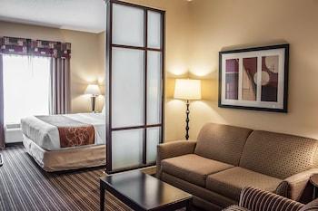 Slika: Comfort Suites West of the Ashley ‒ Charleston