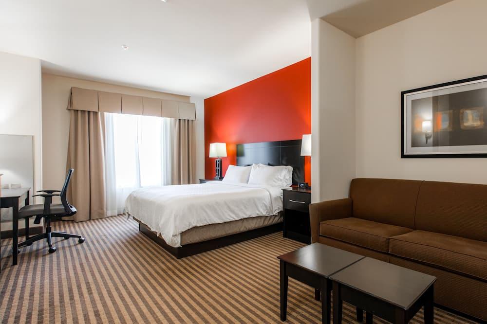 Quarto Standard, 1 cama king-size, Acessível (Comm Mobil Access Tran Shwr) - Área de Estar