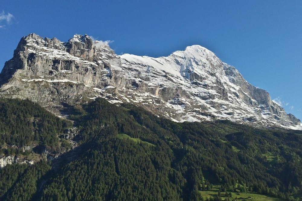 Dobbeltrom – panoramic, balkong, utsikt mot fjell (Eiger) - Utsikt mot fjell