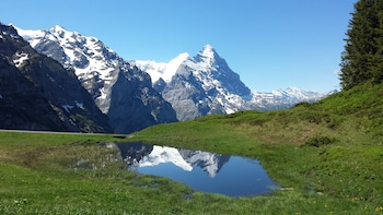 Obrázek hotelu Tschuggen ve městě Grindelwald