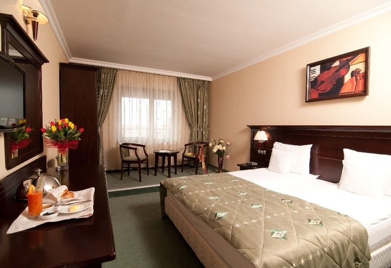 Hotel Rapsodia City Center, Botosani, Deluxe Double or Twin Room, Ruang Tamu