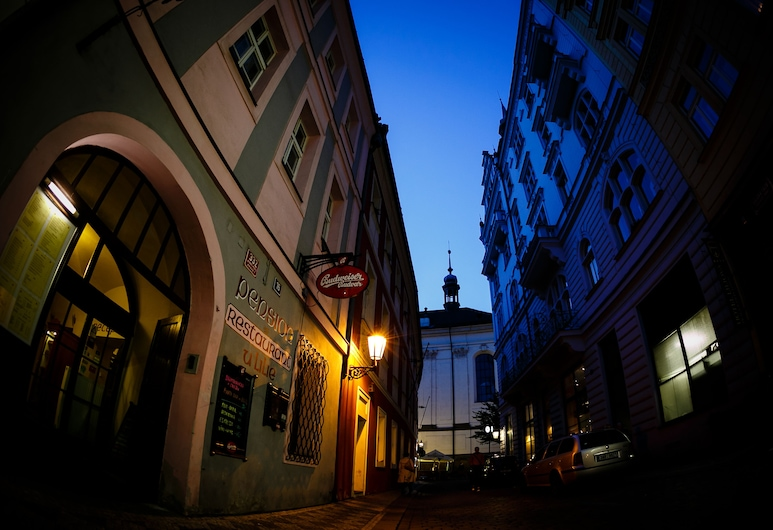 Pension U Lilie, Praag, Voorkant hotel - avond/nacht