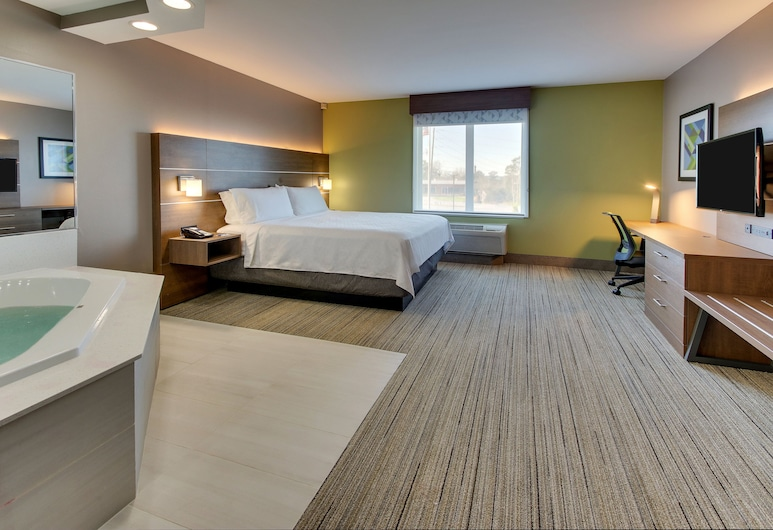Holiday Inn Express Hotel & Suites Columbus-Fort Benning, Columbus, Room, 1 King Bed, Non Smoking (Feature), Guest Room