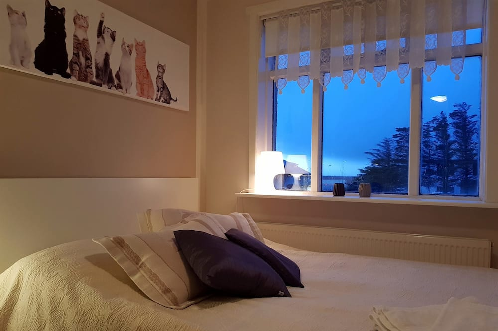 Dvivietis kambarys, 1 standartinė dvigulė lova, Nerūkantiesiems, bendras vonios kambarys - Svečių kambarys