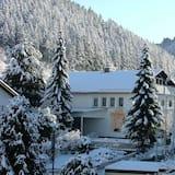 Altes Doktorhaus